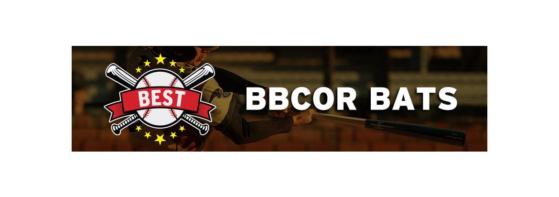 Best BBCOR Bats for 2020: Top BBCOR Bat Reviews